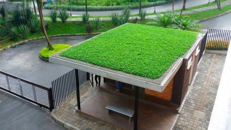 Los techos verdes tienen la capacidad de limpiar el aire contaminado citadino