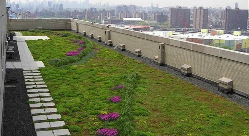 Los techos verdes se traducen en jardines naturales dentro de una vivienda